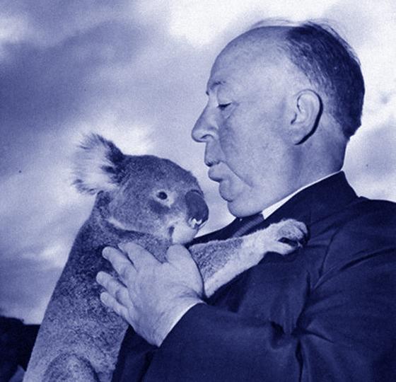 AlfredHitchcock_Koala
